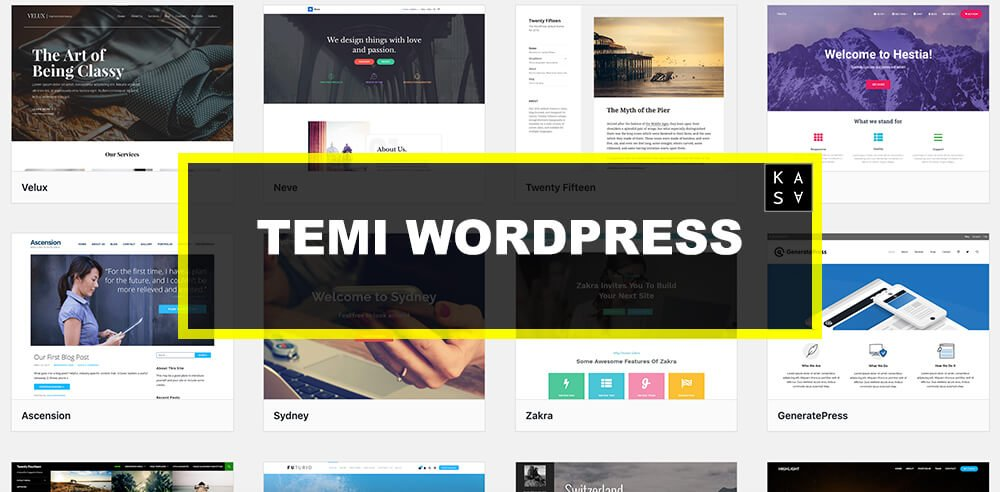 temi-wordpress