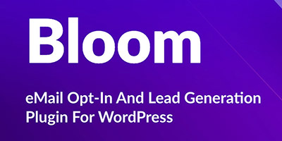 popup-professionale-con-il-tema-wordpress-divi,-plugin-bloom